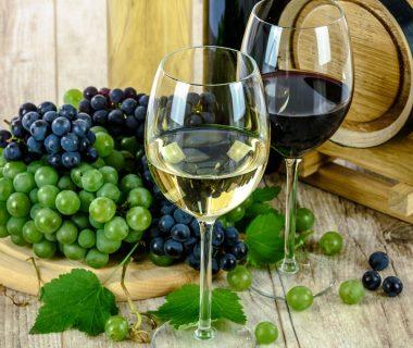 Comment débuter avec le vin ?